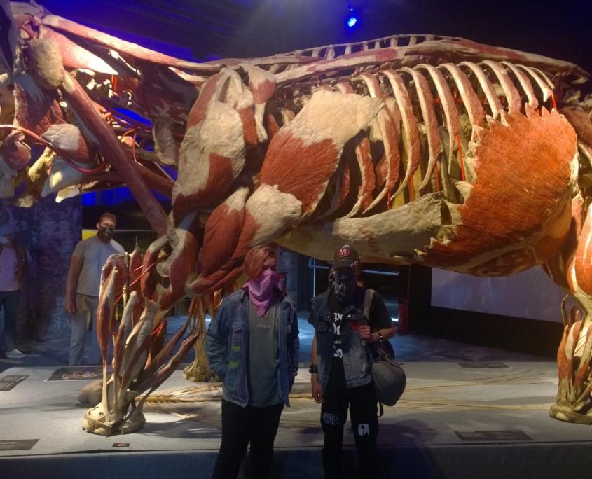 Auch einige Tiere waren ausgestellt – hier ein Elefant